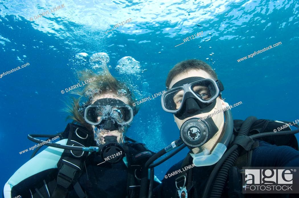 Stock Photo: Scuba divers.