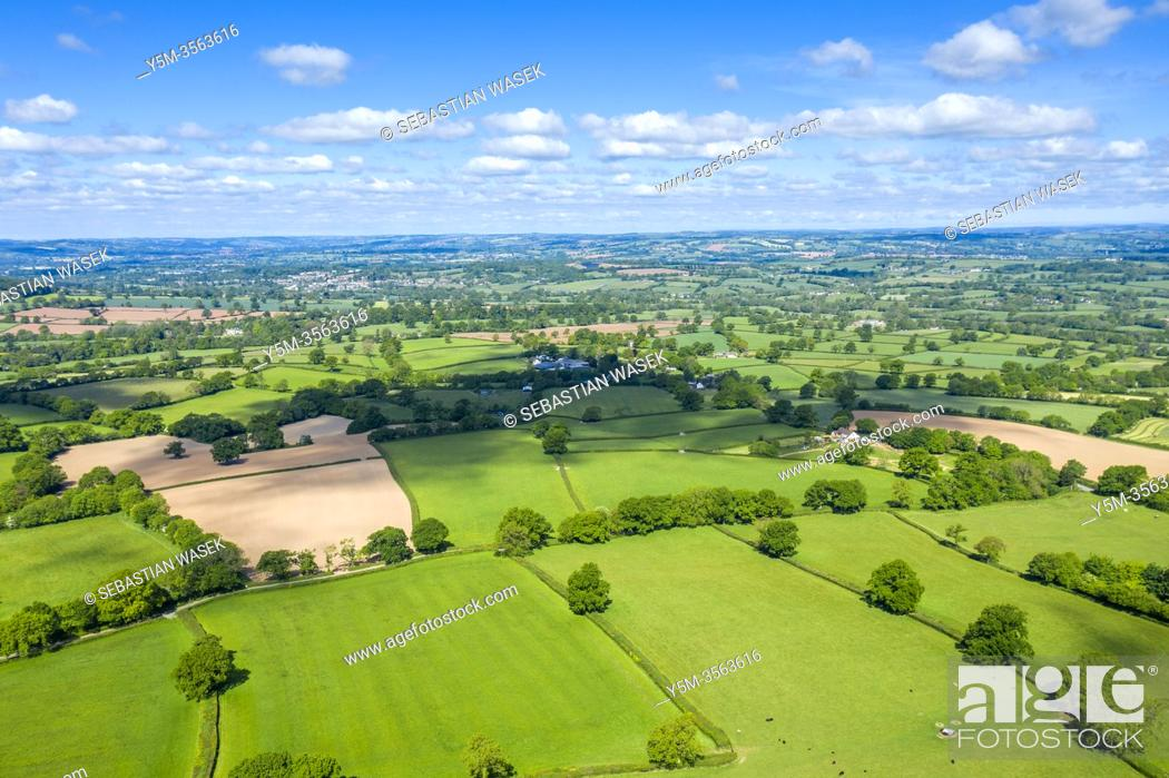 Imagen: Blackdown Hills, Areas of Outstanding Natural Beauty near Craddock, Devon, England, United Kingdom, Europe.