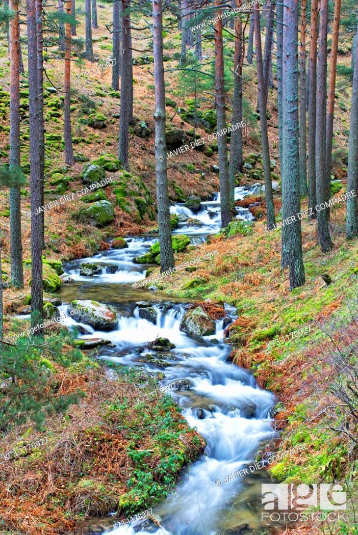 Stock Photo: Waterfall. Cega River. Navafria. Segovia province. Castilla y Leon. Spain.