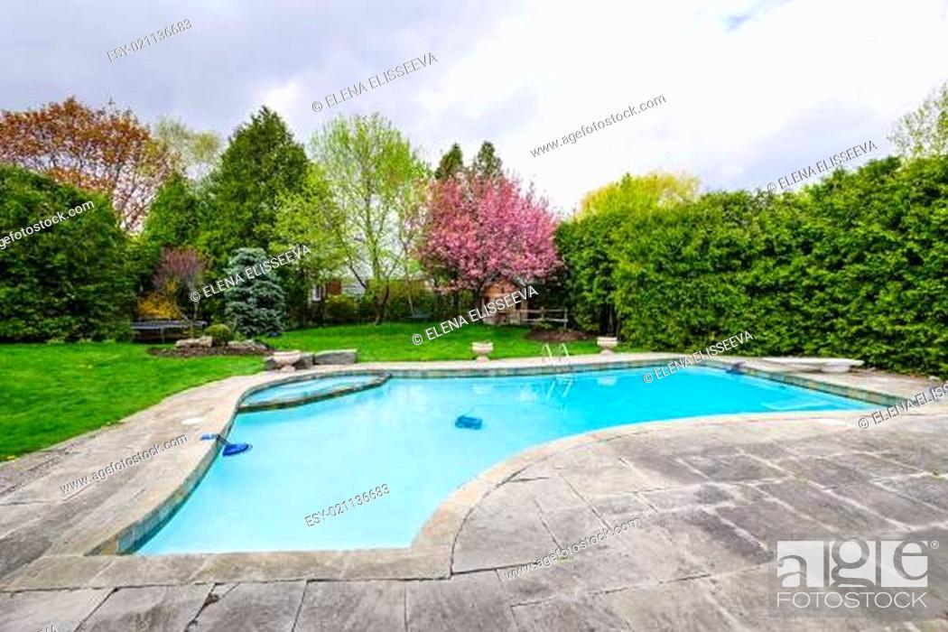 Stock Photo: Swimming pool in backyard.