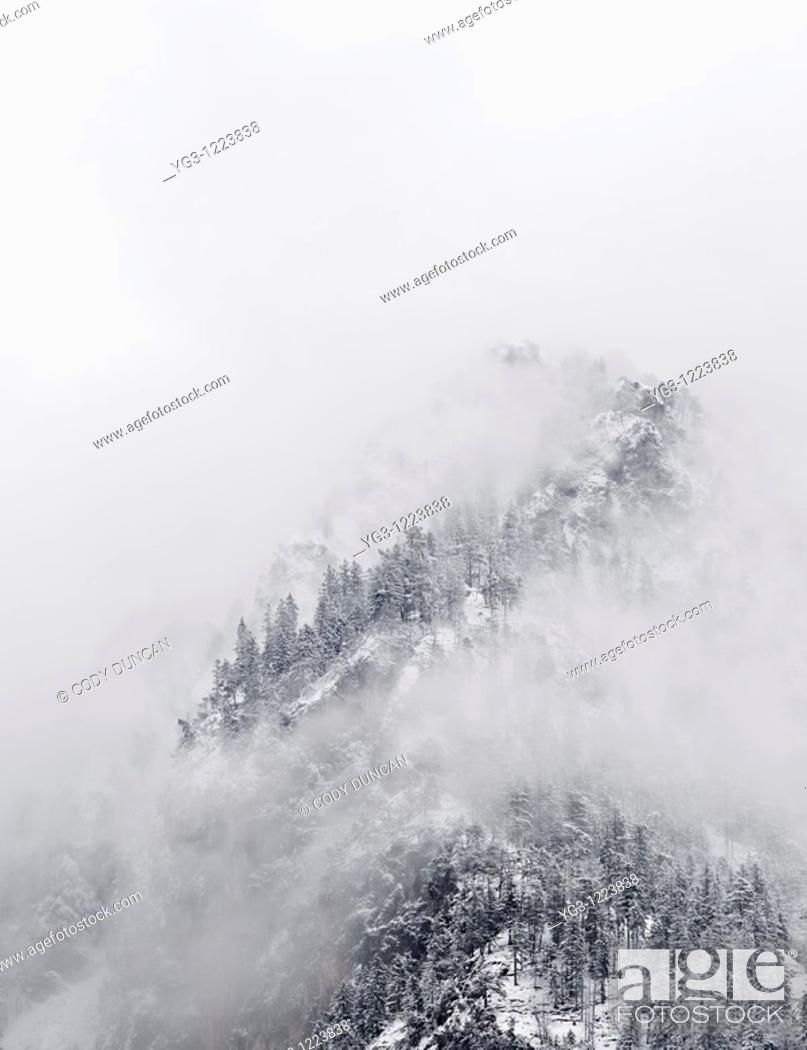 Stock Photo: Winter stormy clearing from snow covered hillside.