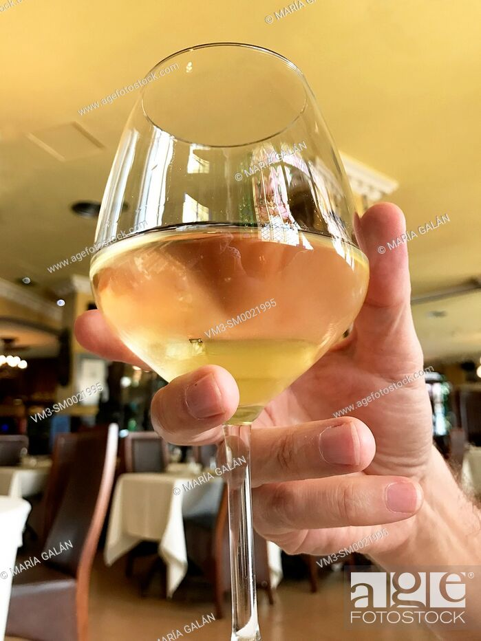 Stock Photo: Man's hand holding a glass of white wine in a restaurant. Close view.
