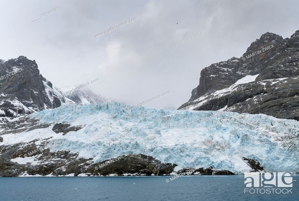 Stock Photo: Glaciers of Drygalski Fjord at the southern end of South Georgia. Antarctica, Subantarctica, South Georgia, October.
