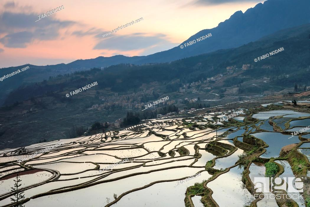 Stock Photo: Sunrise over YuanYang rice terraces in Yunnan, China, one of the latest UNESCO World Heritage Sites.