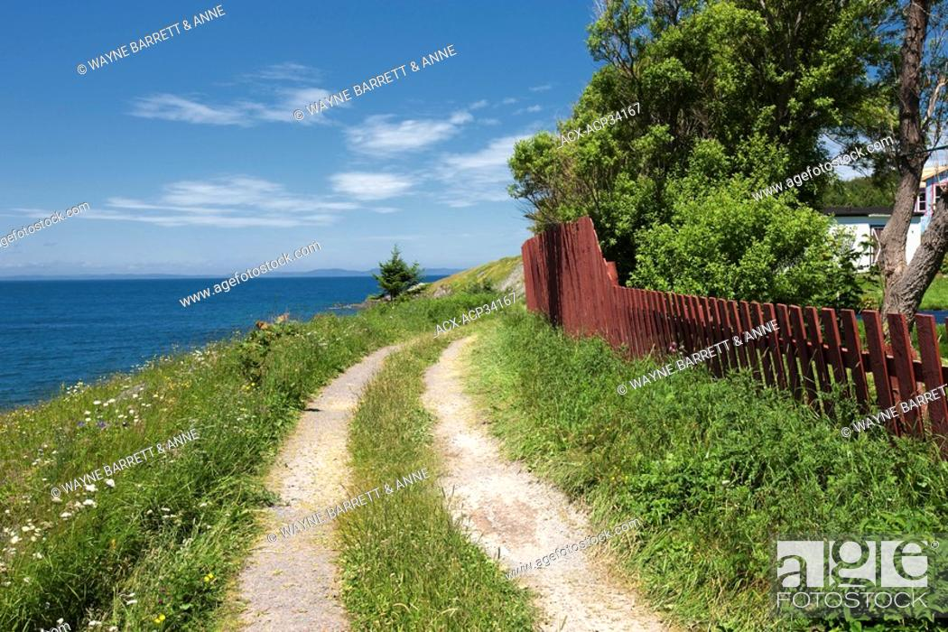 Stock Photo: Clay road and fence along coastline in New Perlican, Newfoundland and Labrador, Canada.