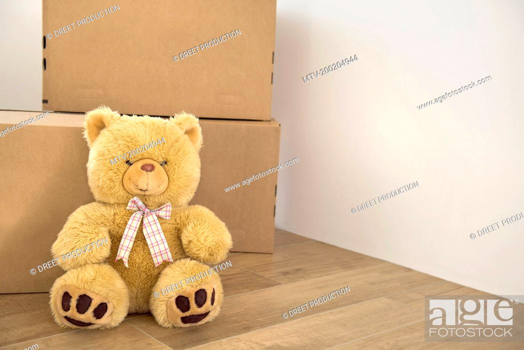 Teddy Bear Wooden Floor Alone Cardboard Boxes Stock Photo Picture