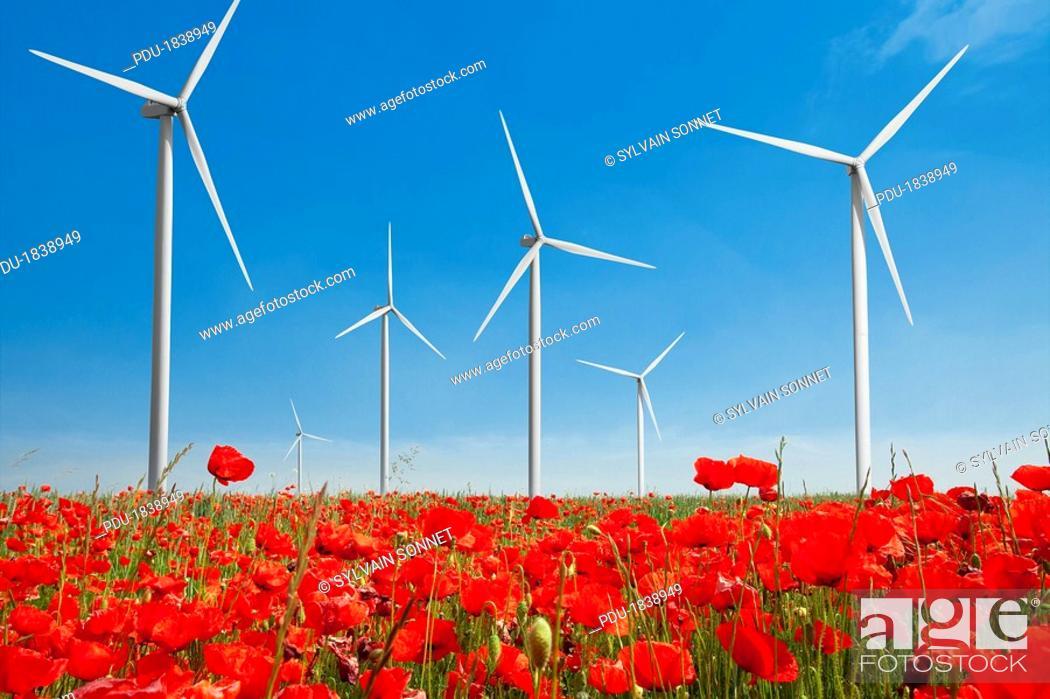 Stock Photo: wind turbine in poppy field.