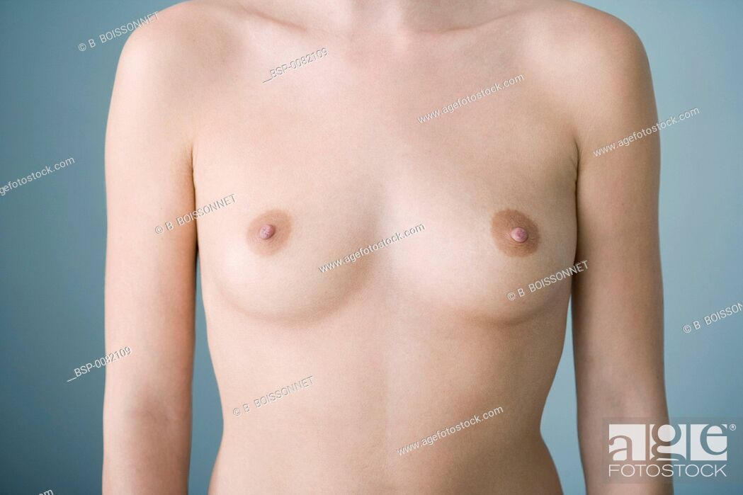 Stock Photo: BREAST Model.