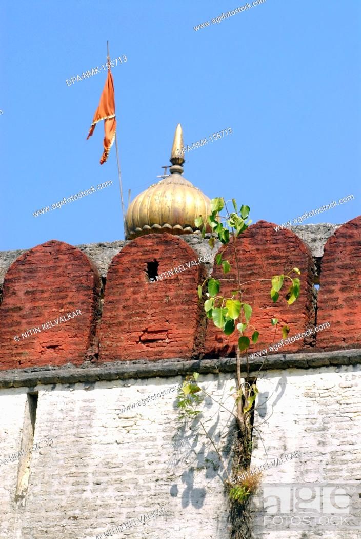 Stock Photo: Tree of Piple grown in cracks of wall ; fortification of Shree Devdeveshwar temple ; Parvati hill ; Pune ; Maharashtra ; India.