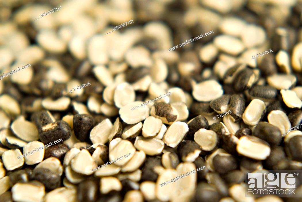 Stock Photo: Close ups of black gram split with shell.
