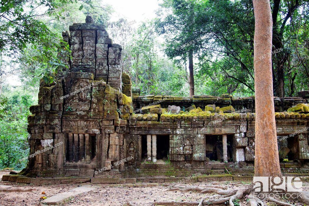 Imagen: Ta Prohm Temple at Siem Reap, Cambodia.