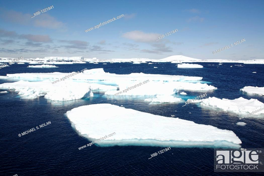 Imagen: Icebergs and bergy bits floating in the Weddell Sea in and around the Antarctic Peninsula during the summer months.