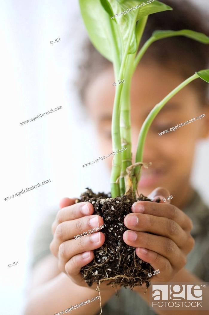 Stock Photo: Mixed Race girl holding plant.