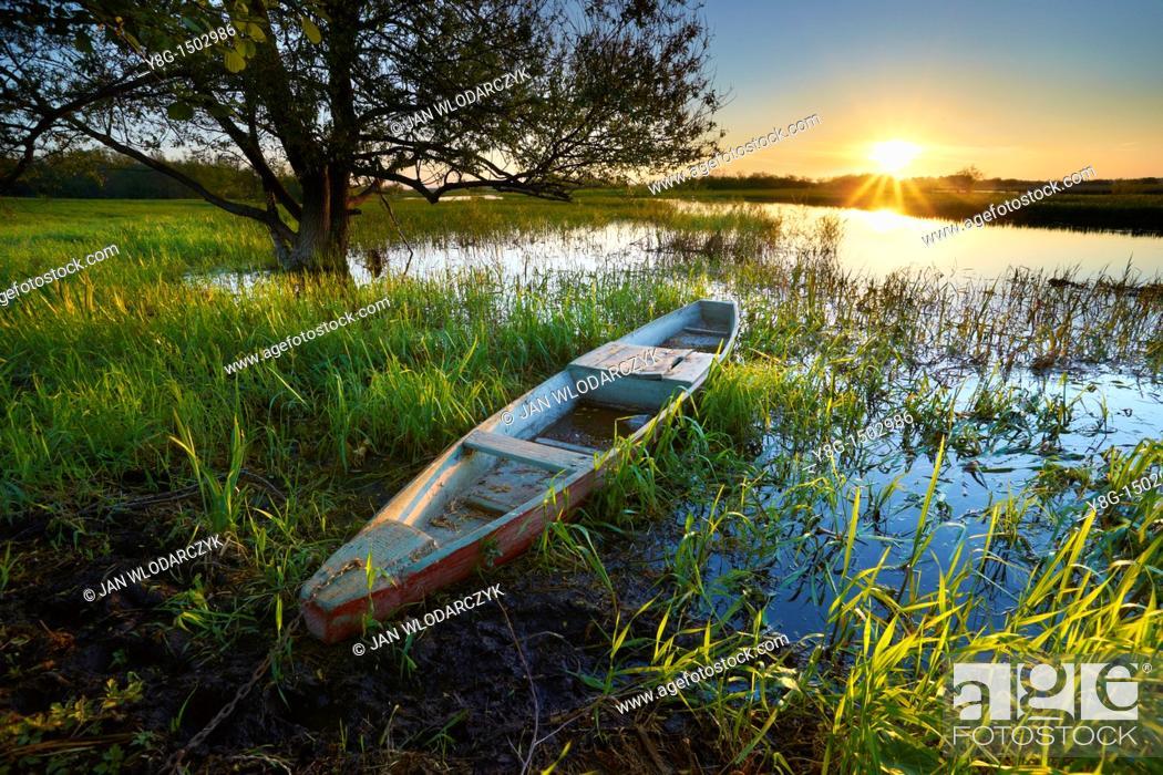 Stock Photo: Sunrise at Biebrza River, National Park, Poland, Europe.