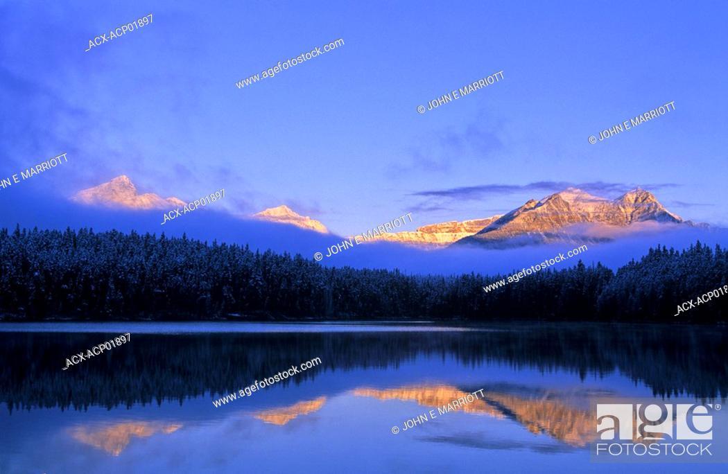 Stock Photo: Waputik Peak and Herbert Lake at sunrise, Banff National Park, Alberta, Canada.