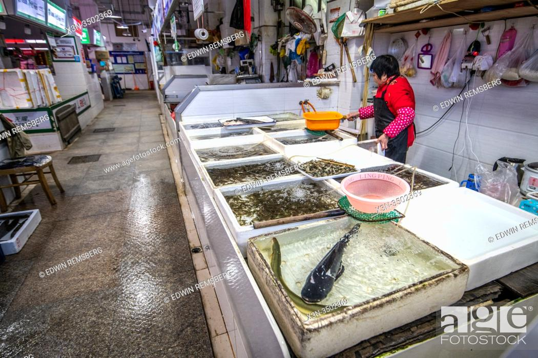 Stock Photo: A seafood vendor at a local food market in Shanghai, China.