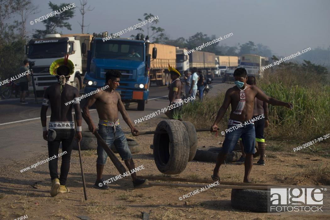 Stock Photo: 17 August 2020, Brazil, Novo Progresso: Members of the Kayapó indigenous people are transporting tyres to block the BR-163 motorway.