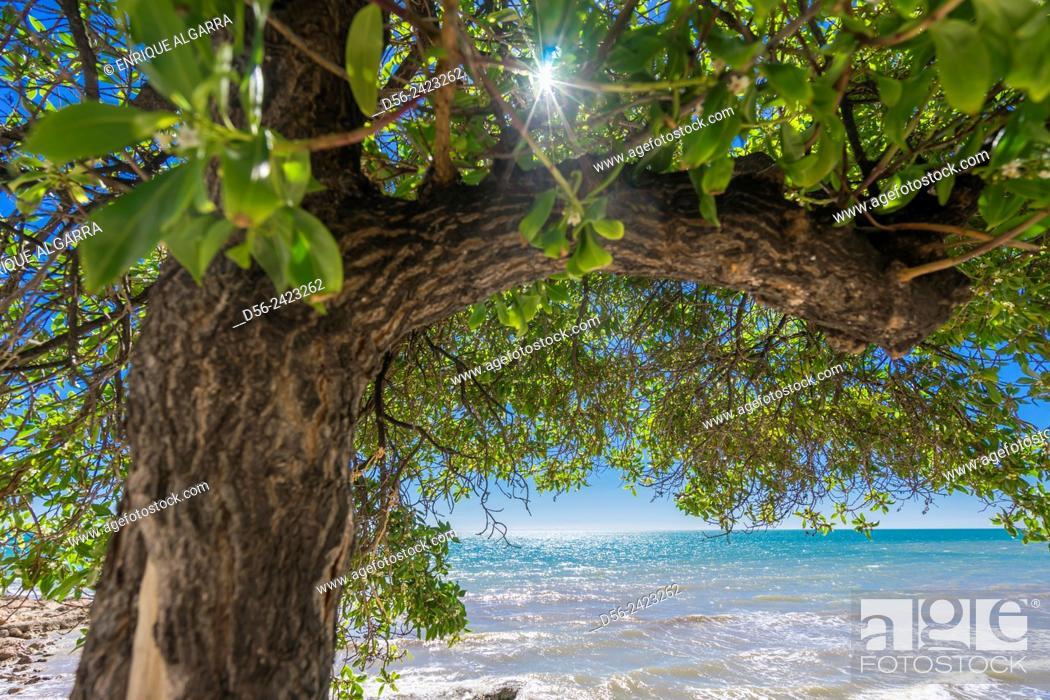 Stock Photo: Carregador beach, Alcocebre, Castellon province, Spain.