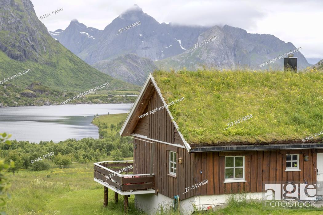 Stock Photo: blossoming grass roof and Arctic circle lakes green valley landscape, shot under bright cloudy light near Napp, Lofoten, Norway.
