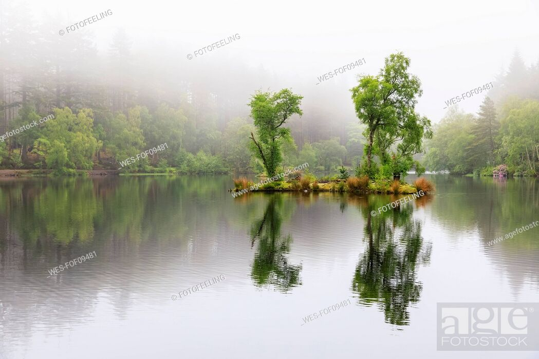 Stock Photo: Great Britain, Scotland, Scottish Highlands, Glencoe, Glencoe Lochan, morning fog.
