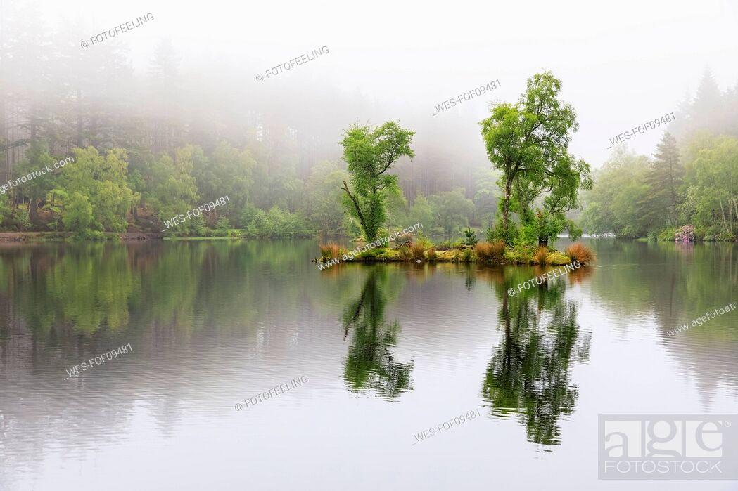 Stock Photo: Great Britain, Scotland, Scottish Highlands, Glencoe, Glencoe Lochan, morning fog.