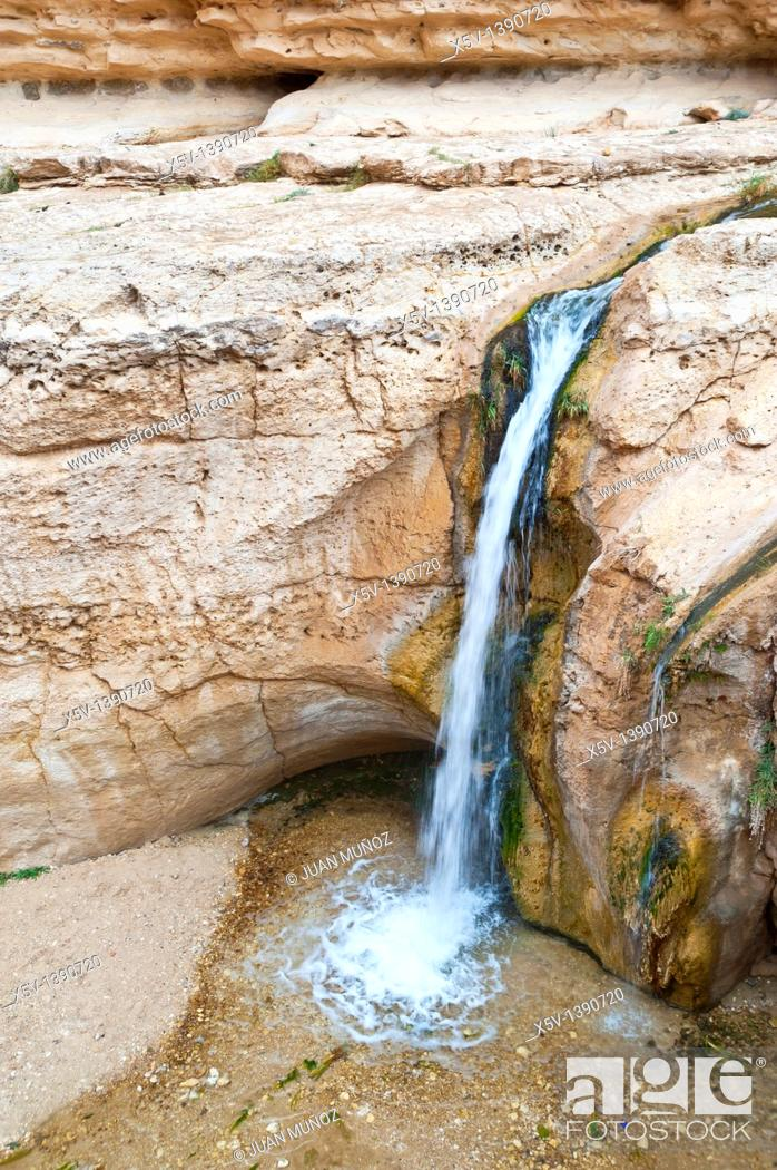 Stock Photo: Oasis, Chebika mountain. Tunisia. Africa.