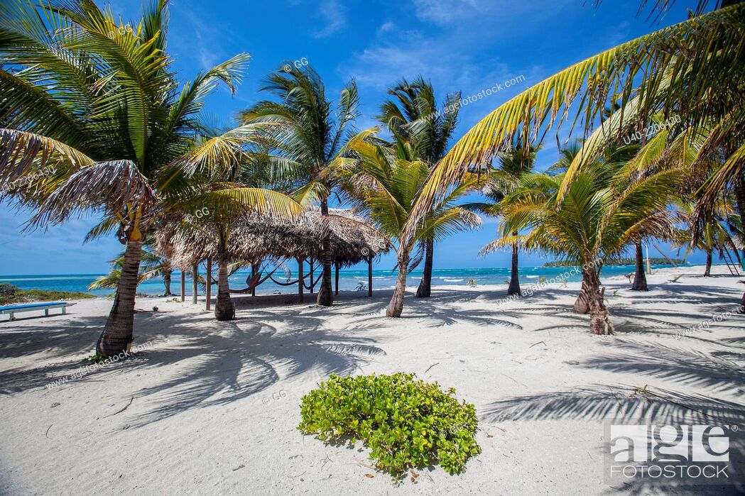 Stock Photo: Belize, Glovers reef Atoll, long caye.