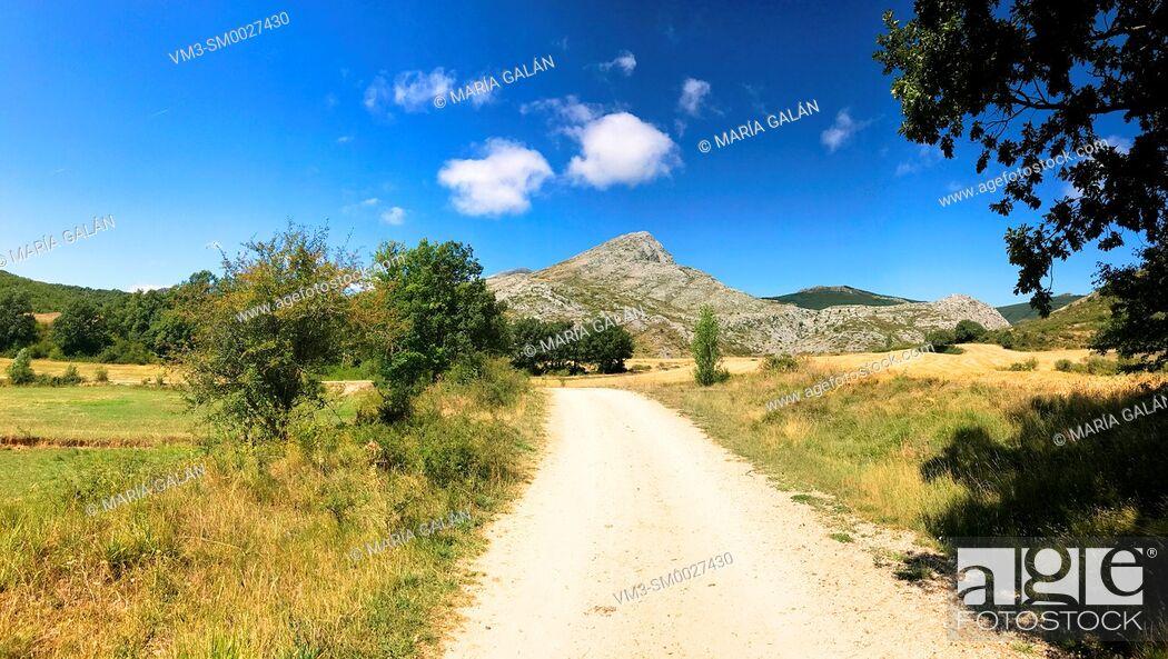 Stock Photo: Path and mountain landscape, panoramic view. Villafria de la Peña, Palencia province, Castilla Leon, Spain.