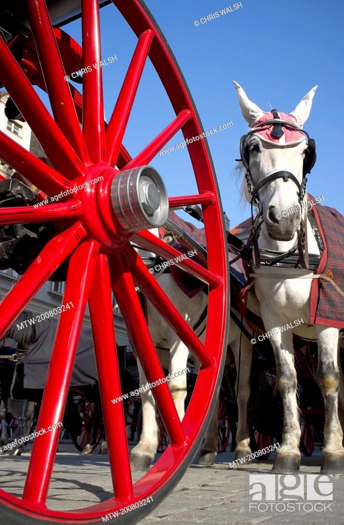 Imagen: Coach wheel red white horse Vienna carriage.
