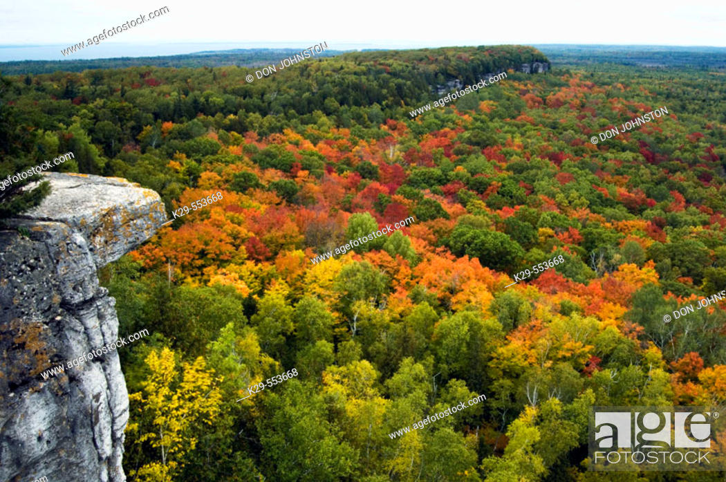 Stock Photo: Deciduous forest from viewpoints along the Cup and Saucer Trail. Manitoulin Island, Ontario, Canada.