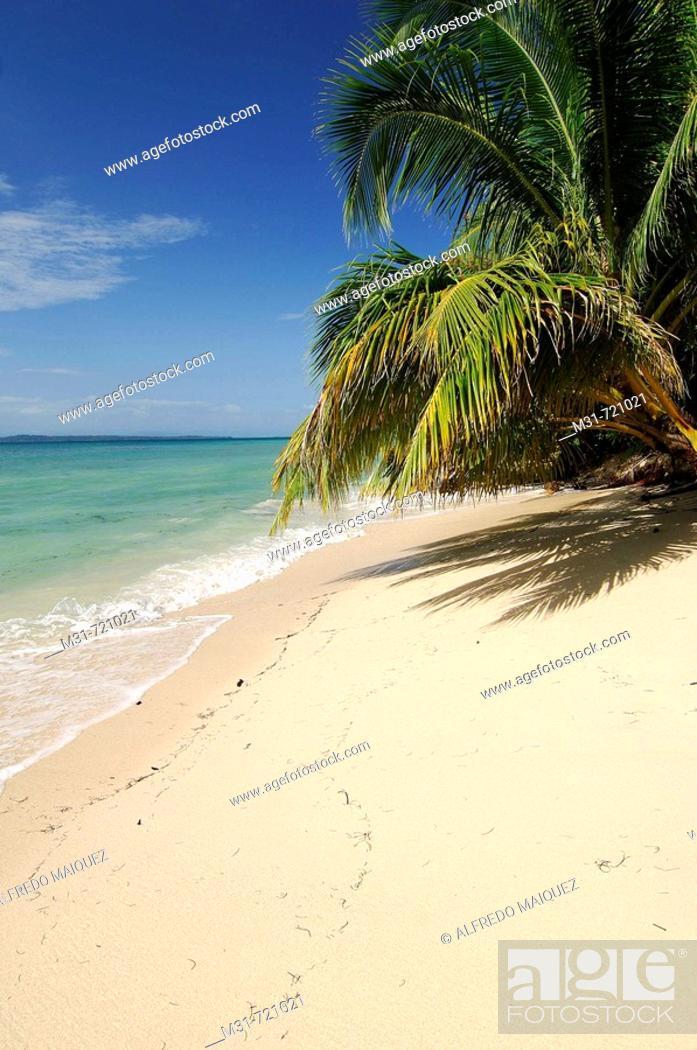 Stock Photo: Beach at Zapatilla key, Bastimentos marine Park, Bocas del Toro islands, Rep.of Panamá, Central America. 2005.