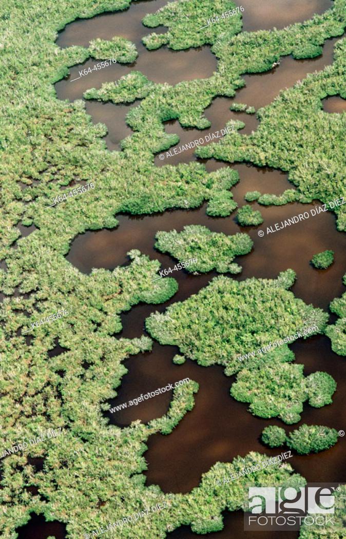 Stock Photo: Everglades National Park. Florida, USA.