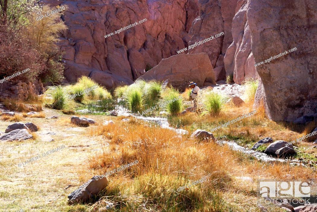 Imagen: Broken of Jere, Worth of Jere, Poblado Toconao, Atacama Desert, Region of Antofagasta, Santiago, Chile.