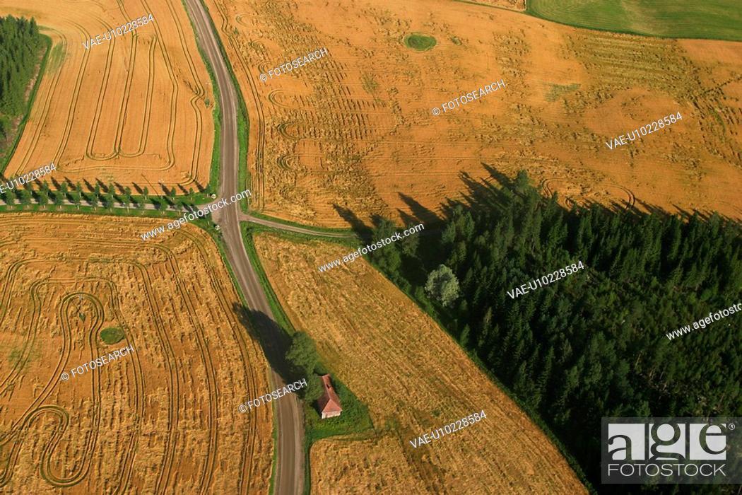 Stock Photo: farm, farm land, cultivated, land, field, farm field.