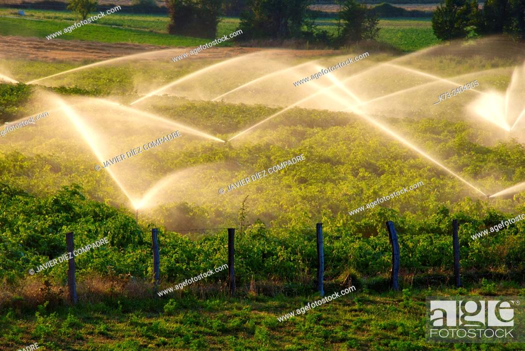 Stock Photo: Sprinklers. San Martin de Elines. Valderredible. Cantabria. Spain.