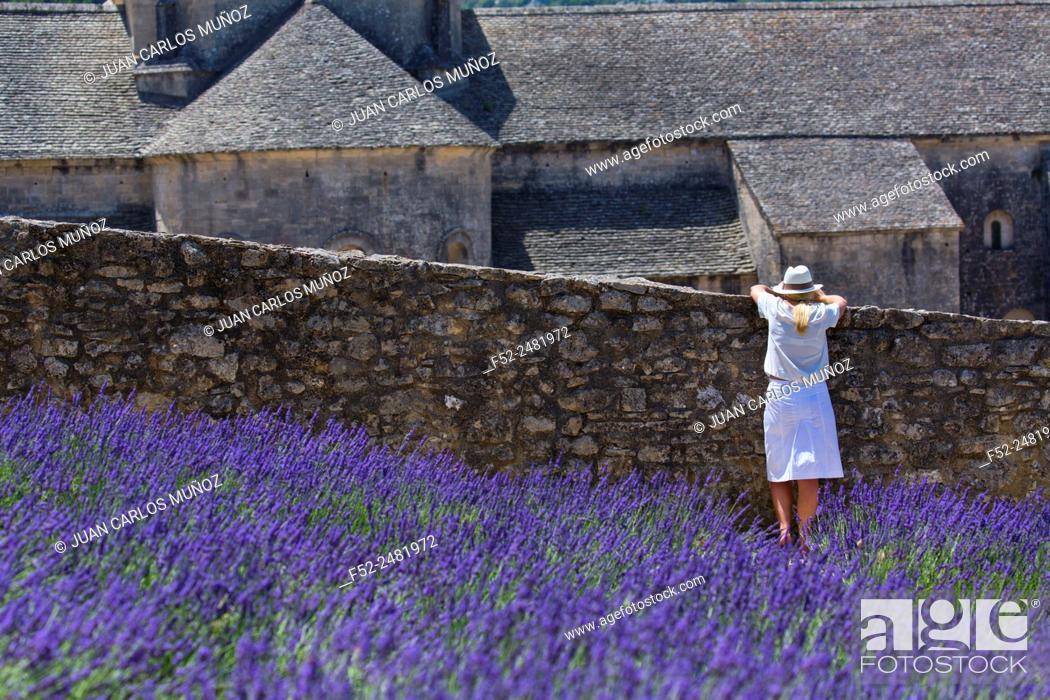 Stock Photo: Senanque Abbey, The Abbaye de Senanque, Cistercian Architecture, Gordes Village, Provence, France, Europe.