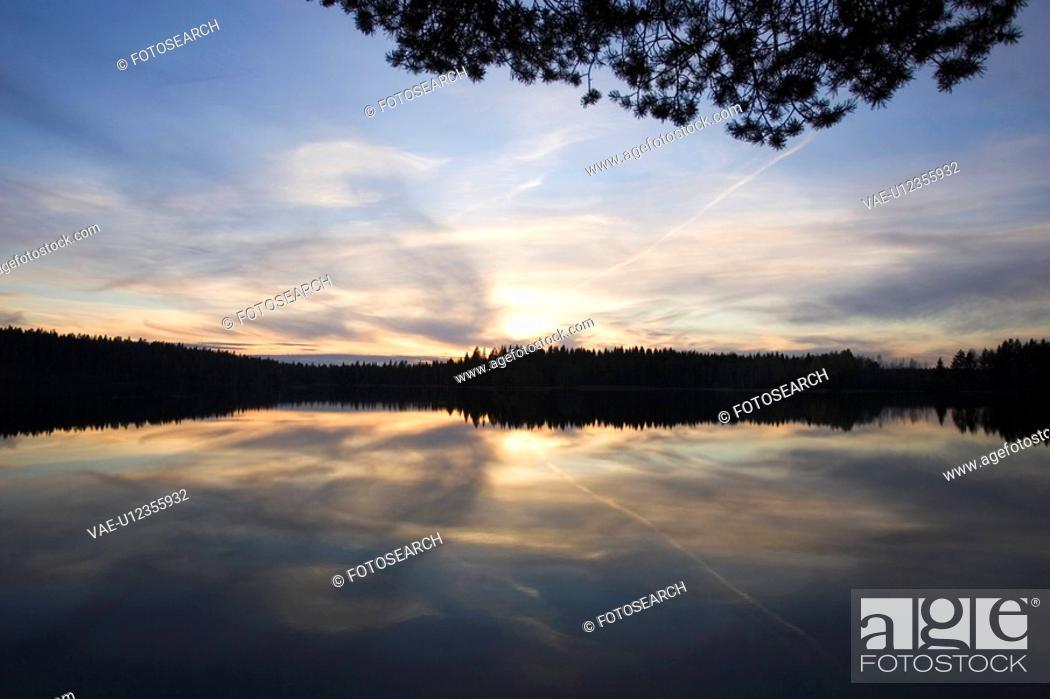 Stock Photo: Blue, Branch, Cloud, Dusk, Glow.