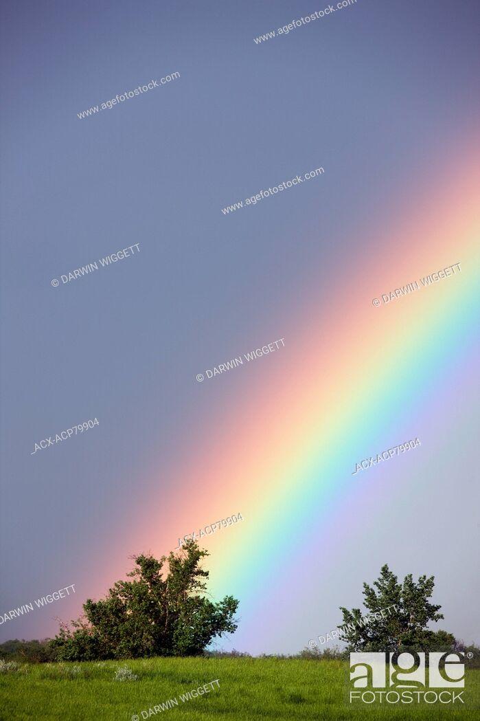 Stock Photo: Rainbow over rangeland near Leader Saskatchewan, Canada.