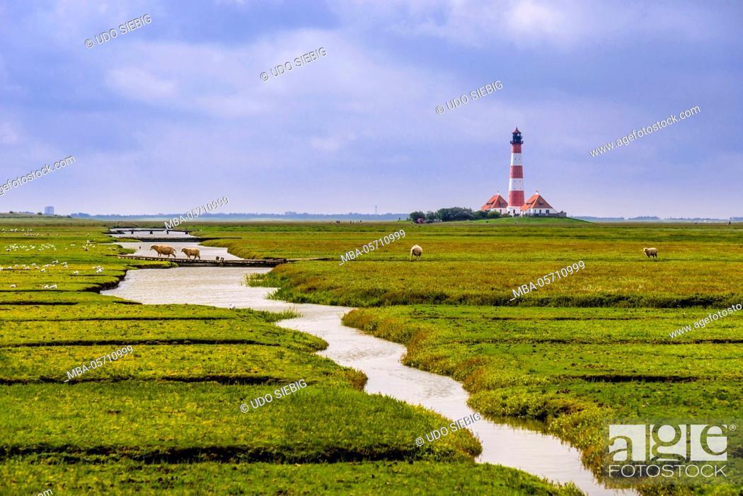 Imagen: Germany, Schleswig-Holstein, North Frisia, peninsula Eider (river)stedt, Westerhever, Westerheversand, salt meadows with lighthouse.