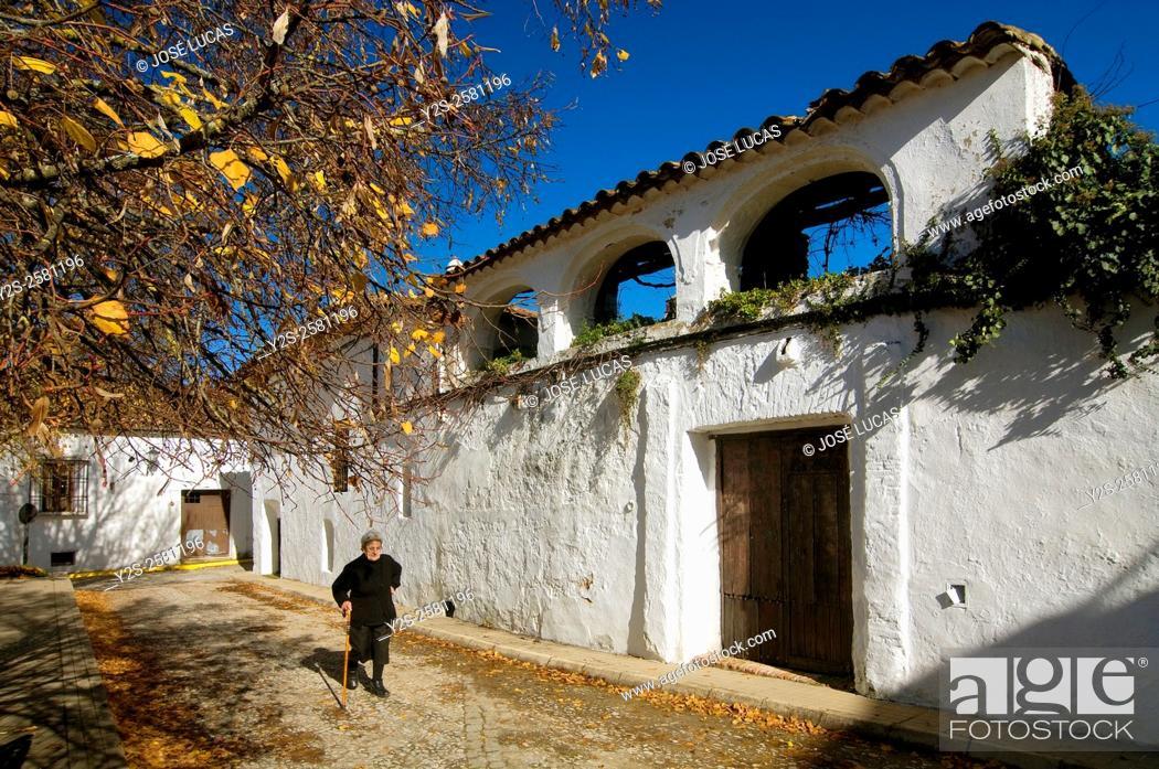 Stock Photo: Muñiz Pablo square and old woman, Castaño del Robledo, Huelva province, Region of Andalusia, Spain, Europe.