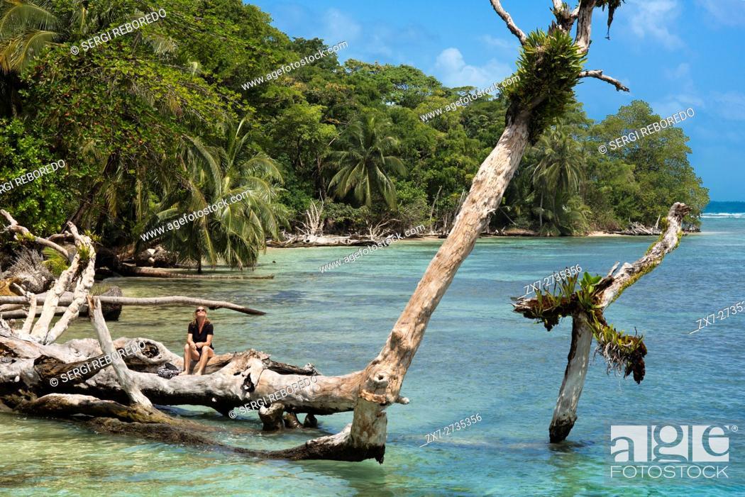 Stock Photo: Island beach taken from the water surface with lush tropical vegetation, Bocas del Toro, Caribbean sea, Zapatillas Keys, Panama.