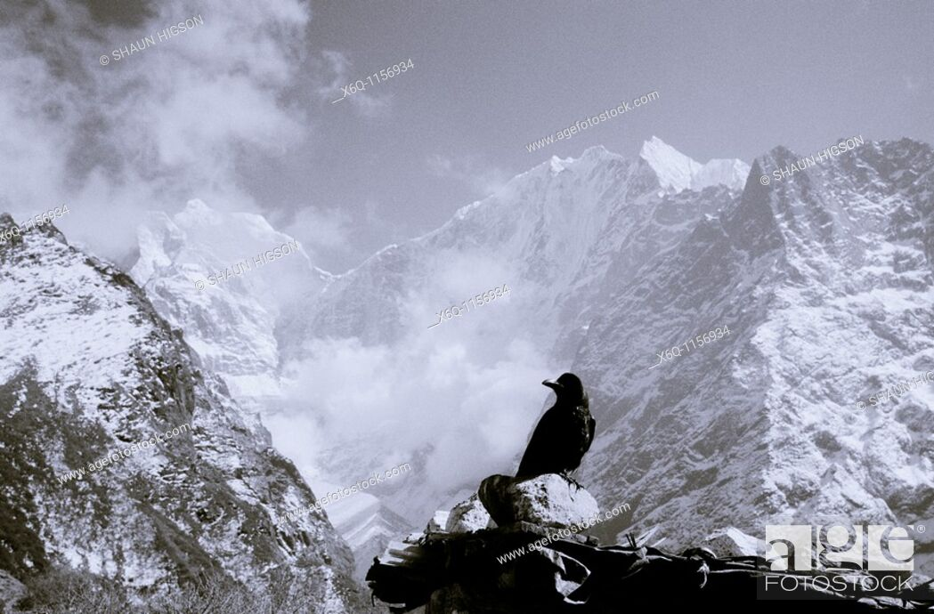 Stock Photo: The Himalayas, Nepal.