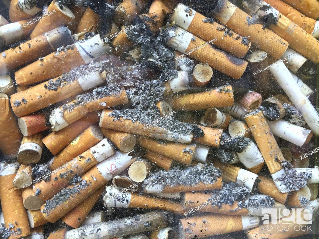 Stock Photo: Discarded Cigarette Butts in a Transparent Pavement Bin . . . .