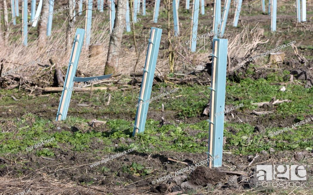 Photo de stock: Preparing the ground for planting trees, the Netherlands.