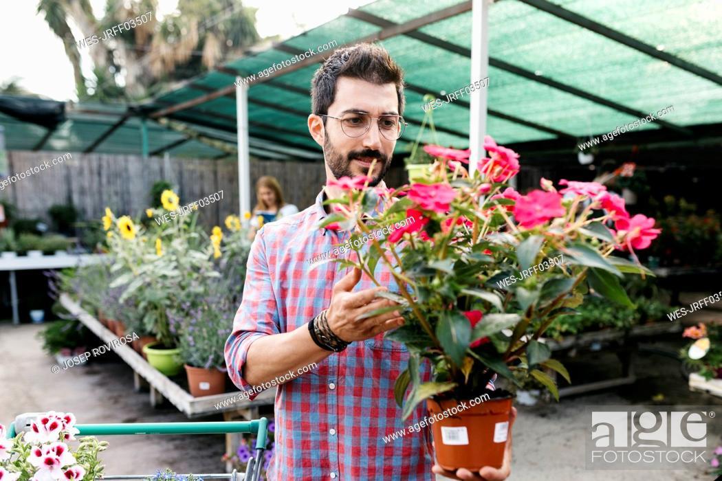 Stock Photo: Customer of a garden center choosing a flower.