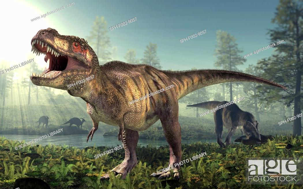 Stock Photo: Tyrannosaurus rex dinosaur, artwork.