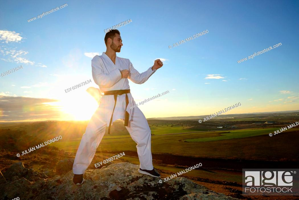 Stock Photo: Specialist in martial arts making technical movements.