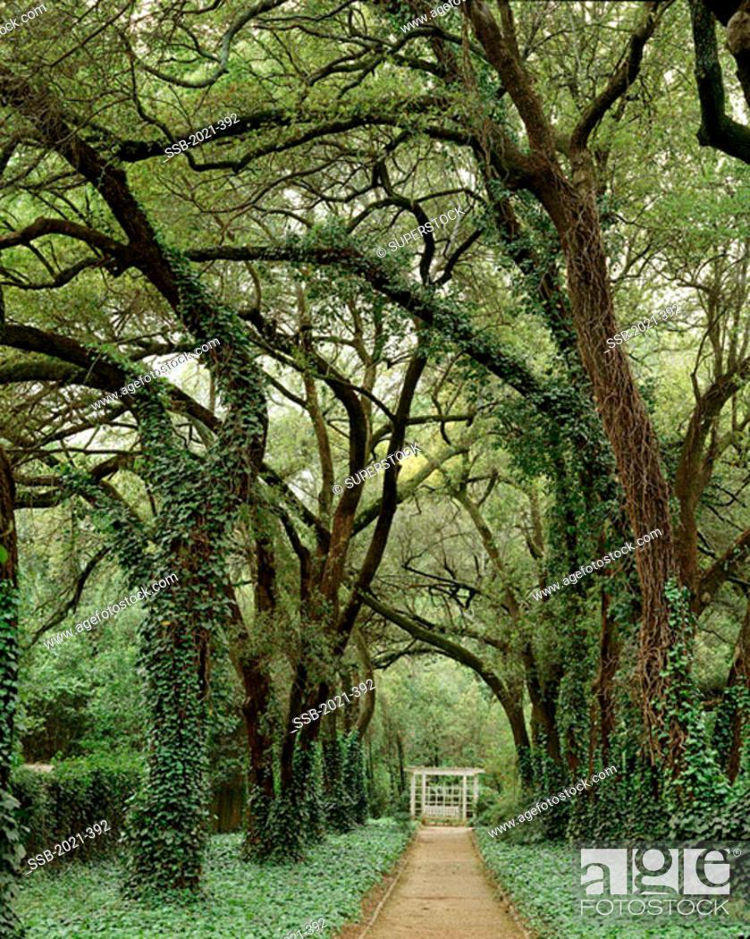 Hopeland Gardens Christmas Lights.Hopeland Gardens Garden Best Fragrances