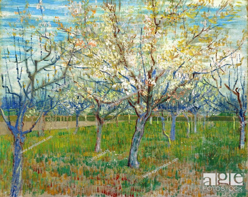 Stock Photo: Vincent van Gogh - De roze boomgaard - Van Gogh Museum, Amsterdam.