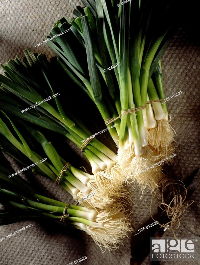 Stock Photo: bunches of leeks.